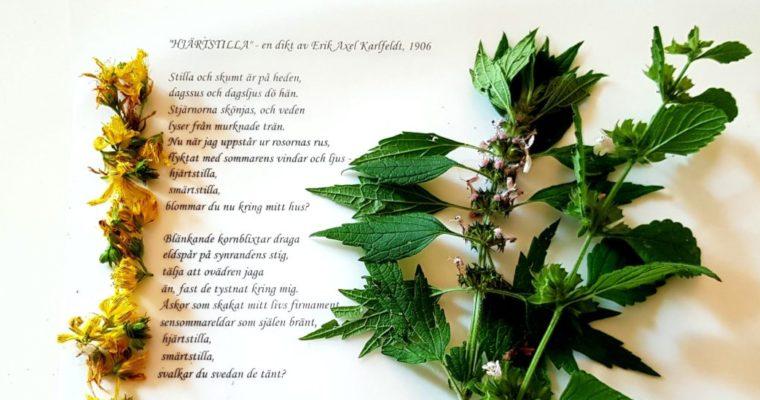 Stilla hjärtat med te och poesi